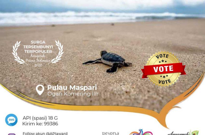 Antara Maspari, Penyu Sisik dan Cerita Bajak Laut