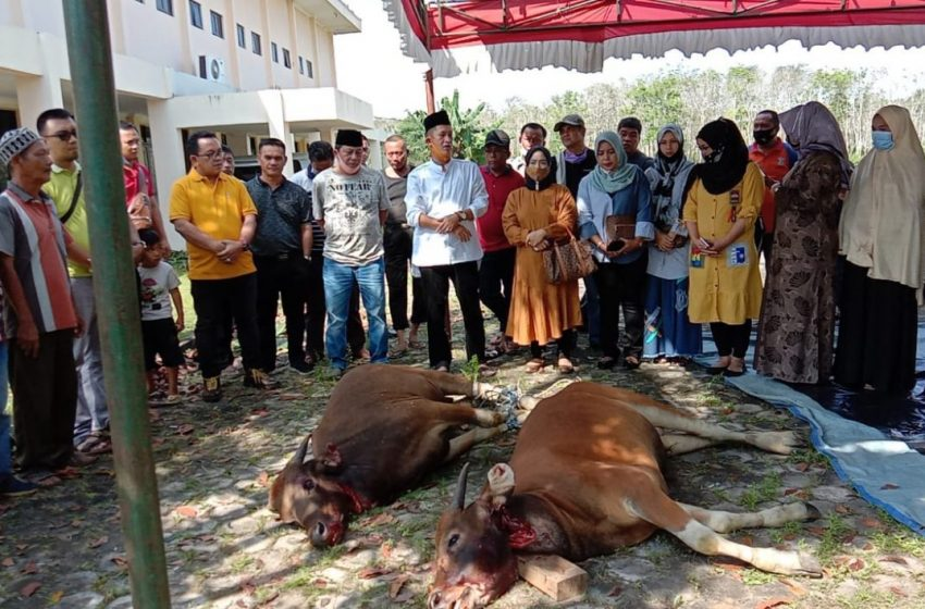 Lebaran Ke Dua, Pimpinan dan Anggota DPRD Banyuasin Potong Dua Ekor Sapi Qurban