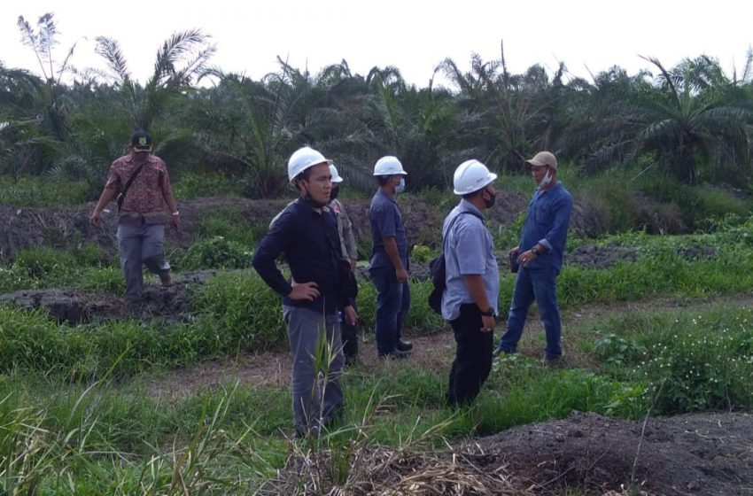 Diduga Pabrik Kelapa Sawit Cemari Lingkungan,Tim DLH ambil sampel air