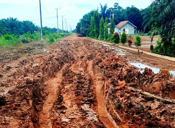 Jalan Desa Sumber Mulyo Pulau Rimau Rusak Parah