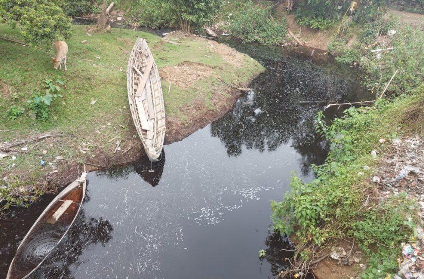 Diduga Tercemar Limbah, Aliran Sungai di Desa Suka Merindu Muara Enim Menghitam