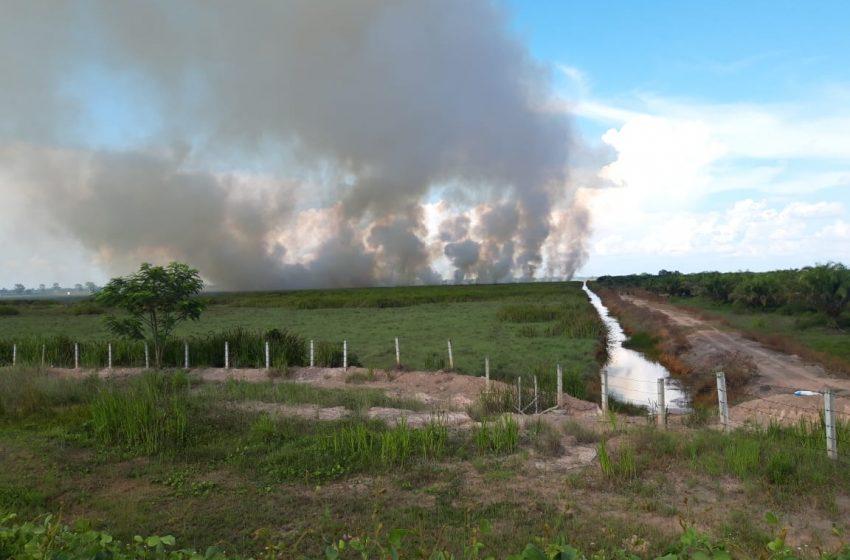 Tiga Hektar Lahan Kosong di Tepian Tol Palindra Kembali Terbakar